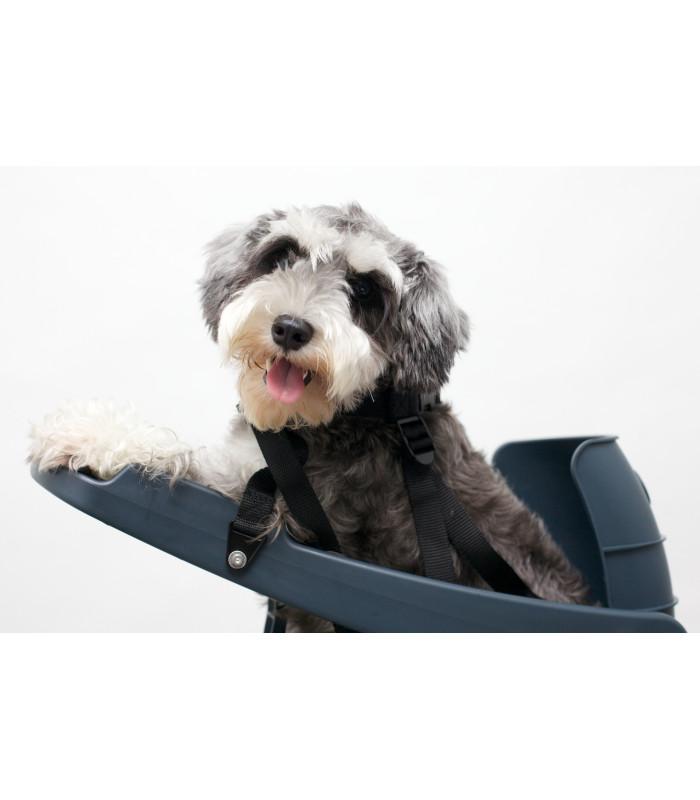 Buddyrider krzesełko dla psa na rower w komplecie z poduszką.