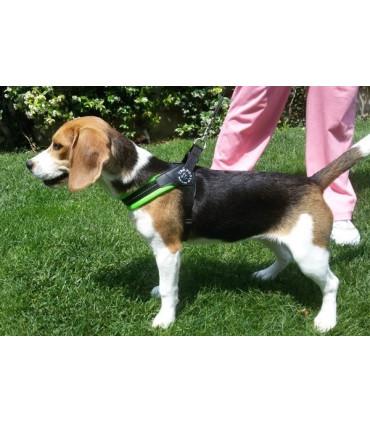 TRE PONTI szelki dla psa